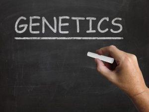 Genetics on a chalk board