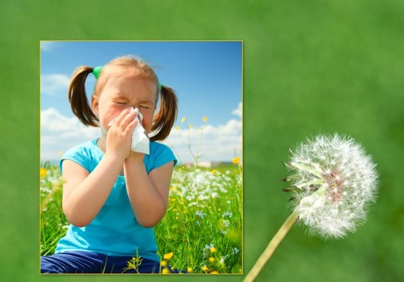 allergies image 2